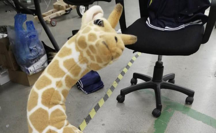 千万不要学别人买长颈鹿呀!!