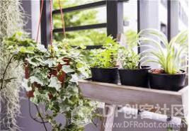 【Gravity】Mind+掌控板进阶教程-项目七 植物监测仪