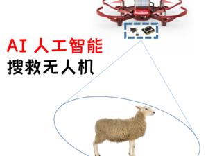 《AI 人工智能搜救无人机》全课时导航