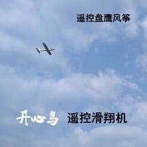手抛飞机改遥控实用方案