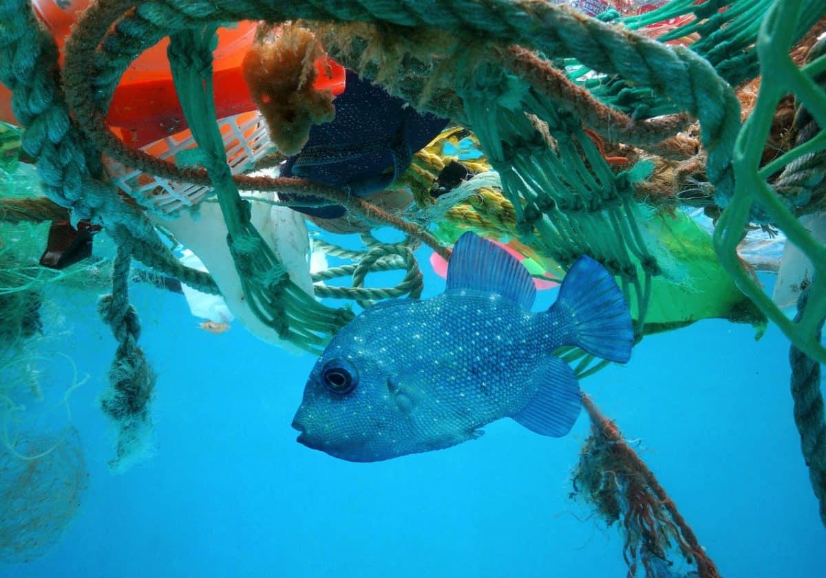 海洋垃圾回收船