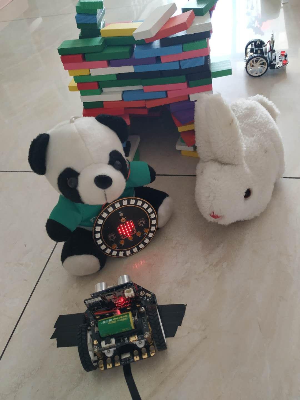 寻找失散的熊猫妹妹----麦昆寻亲记