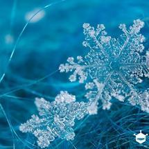 micro:bit创客作品推荐:挑战2【BOSON】冰雪融化实验及BOSON防水温度传感器试用