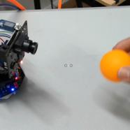 DFRobot-Makelog造物记精选项目推荐我的麦昆有慧眼