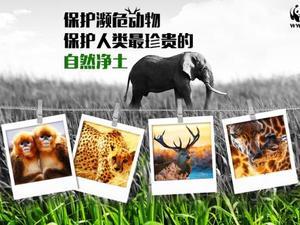 #线上创客马拉松挑战赛#濒危动物保护计划